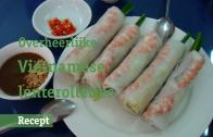 22 Vietnamese lenterolletjes BREED