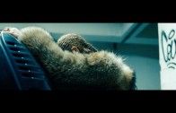 Beyoncé's nieuwe trailer: LEMONADE