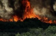 Hevige bosbranden in Californië