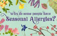 Waarom hebben mensen seizoen allergieën?