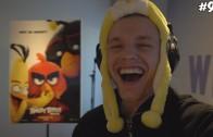 Enzoknol in Angry Birds