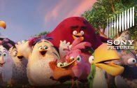 The Angry Birds – Het grootste feest van de zomer