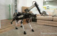 Hondenrobot helpt in huis