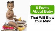 6 feitjes over baby's