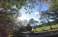Eekhoorn steelt een GoPro