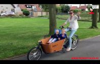 Babboe Electrische City Mountain bakfiets