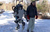 Vijf bijzondere robots