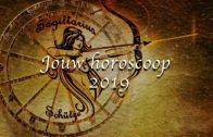Zo ziet jouw horoscoop eruit in 2019!